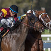 Flameaway inside  with Jose Lezcano up wins Sam F Davis @ Tampa Bay Downs. <br /> © Joe DiOrio/Winningimages.biz