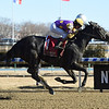 Midnight Disguise wins the 2018 Busanda<br /> Coglianese Photos/Chelsea Durand