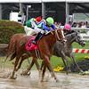 Vertical Oak Ricardo Santana Jr. Skipat Stakes Chad B. Harmon
