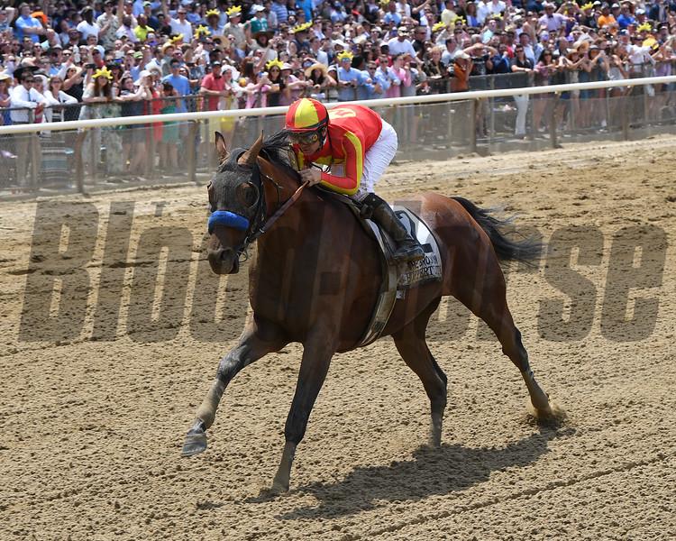 Hoppertunity wins 2018 Brooklyn Invitational Stakes at Belmont Park June 9, 2018. Photo: Coglianese Photo/Chelsea Durand