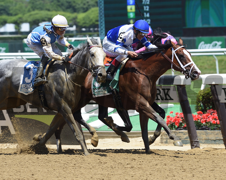 Prince Lucky wins 2018 Easy Goer Stakes at Belmont Park June 9, 2018. Photo: Coglianese Photos/David Alcosser