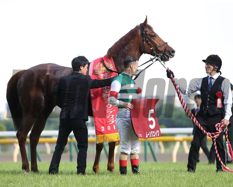 Moonquake, Keio Hai Spring Cup, G2, Tokyo Racecourse, May 12, 2018