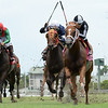 Pay Any Price wins the 2018 Bob Umphrey Turf Sprint<br /> Coglianese Photos