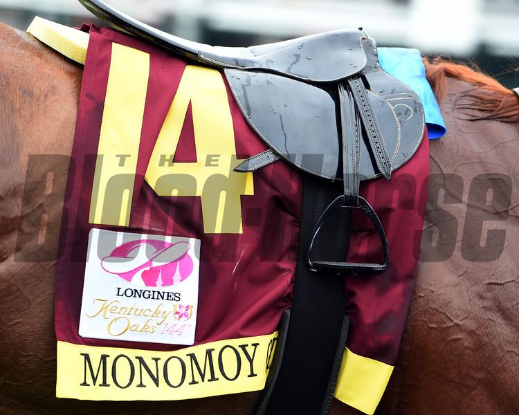 Monomoy Girl wins the 2018 Kentucky Oaks<br /> Dave Harmon