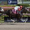 Tommy Macho; Luis Saez; Fred W. Hooper Stakes; G3; Gulfstream Park; January 27 2018