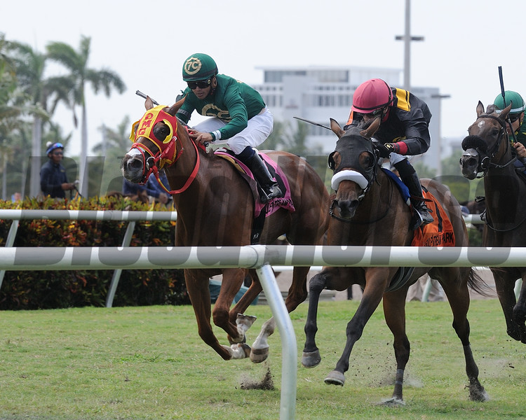 Camila Princess (#8) is placed first in the 2018 Martha Washington Stakes after the disqualification of Midnight Soiree (#7).<br /> Coglianese Photos/Kenny Martin