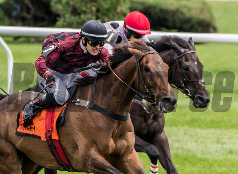 Show Court with Michael Mitchell duels to the wire with Iranistan with jockey Darren Nagle on his way to the win in the A.P. Smithwick at the Saratoga Race Course in Monday July 30, 2018 in Saratoga Springs, N.Y.  Photo by Skip Dickstein