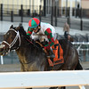 Firenze Fire wins the 2018 Jerome Stakes<br /> Coglianese Photos/Annette Jasko