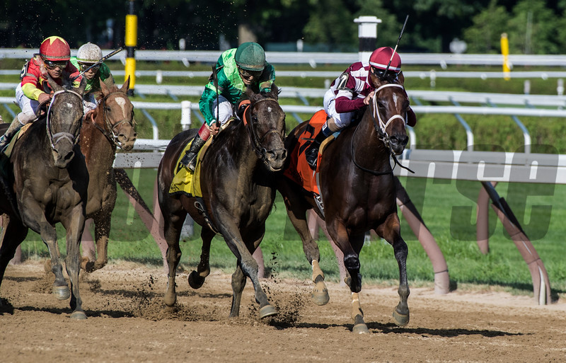 Farrell ridden by jockey Channing Hill dueled to the wire with #4 Wow Cat and #2 Verve's Tale to win the 42nd running of the Grade III Shuvee at the Saratoga Race Course Sunday July 29, 2018 in Saratoga Springs, N.Y. (Skip Dickstein- Photo)
