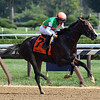 Sea Foam wins the 2018 Albany<br /> Coglianese Photos