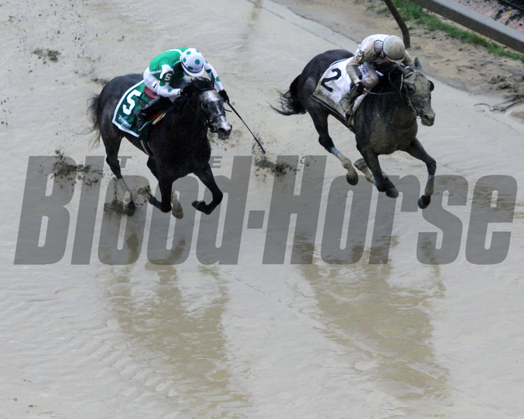 In Arrears Fergal Lynch Race 6 Pimlico Chad B. Harmon