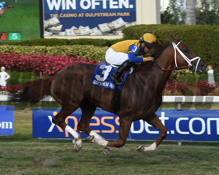 Hi Happy wins the 2018 Pan American Stakes<br /> Coglianese Photos/Leslie Martin