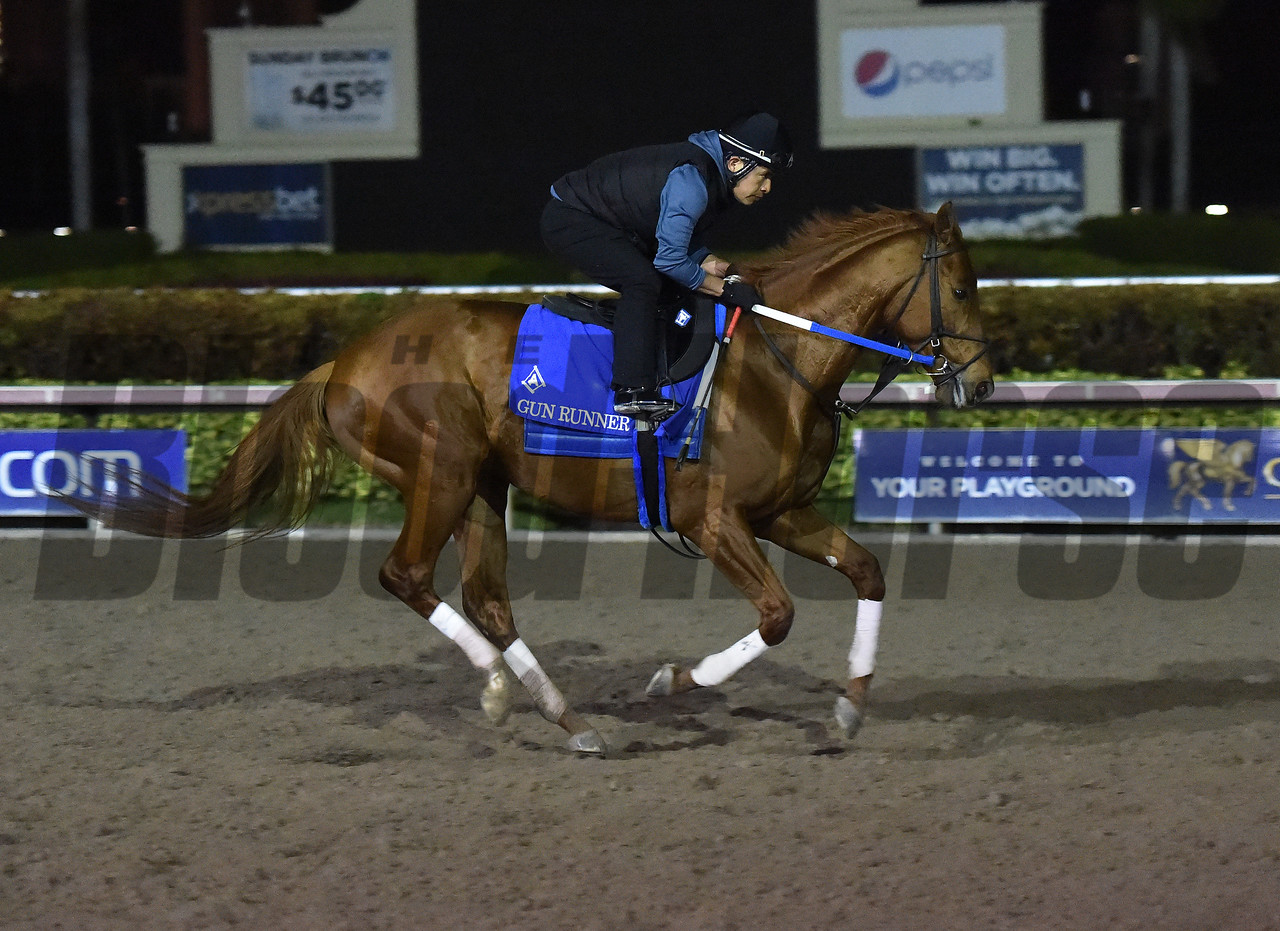 Gun Runner, Pegasus World Cup, Gulfstream Park, January 19 2018