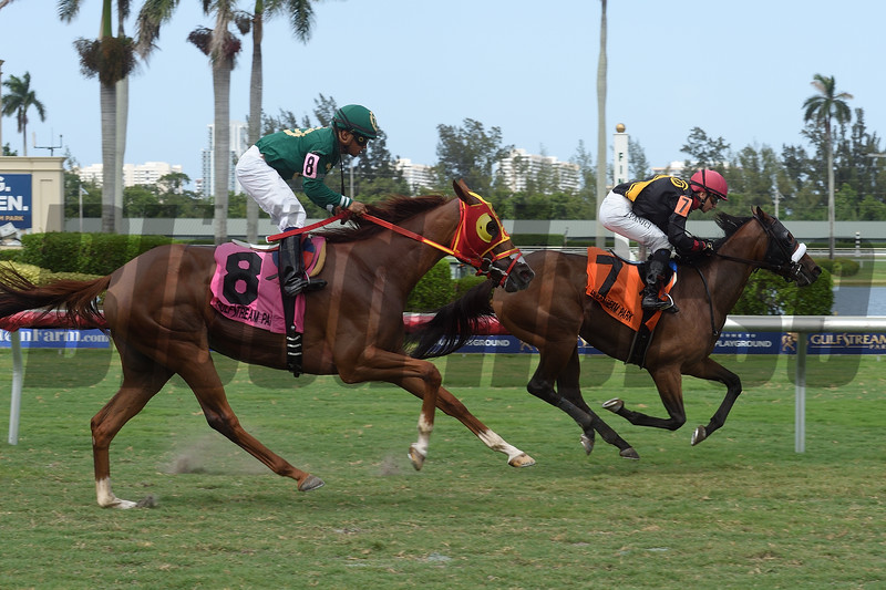 Camila Princess (#8) is placed first in the 2018 Martha Washington Stakes after the disqualification of Midnight Soiree (#7).<br /> Coglianese Photos/Leslie Martin