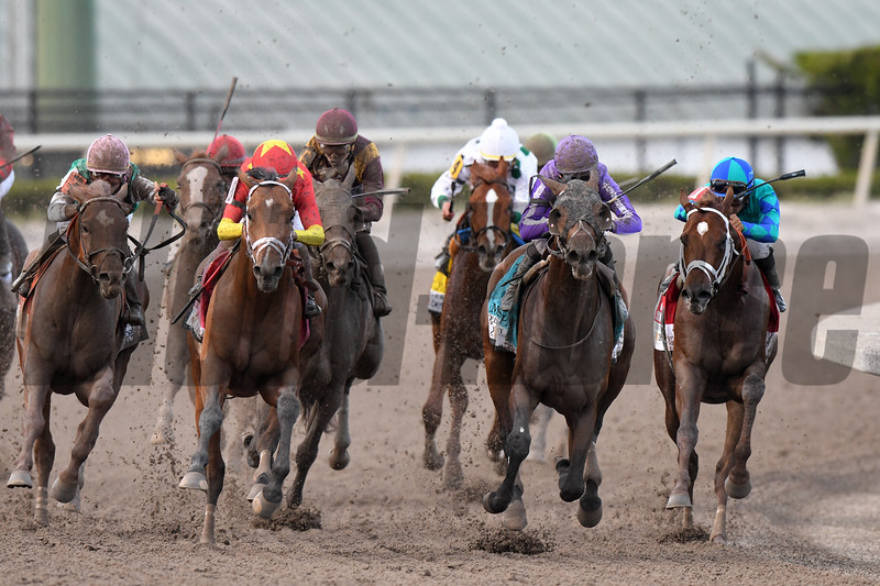 Audible wins the 2018 Florida Derby<br /> Coglianese Photos/Andie Biancone