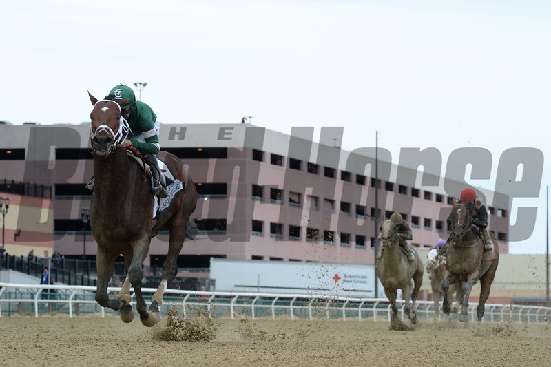 Army Mule wins the 2018 Carter<br /> Coglianese Photos