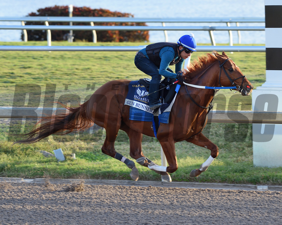 Gun Runner, breeze, Pegasus World Cup, Gulfstream Park, January 22 2018