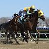 My Won Love wins the 2018 Videogenic Stakes<br /> Coglianese Photos/Rob Mauhar