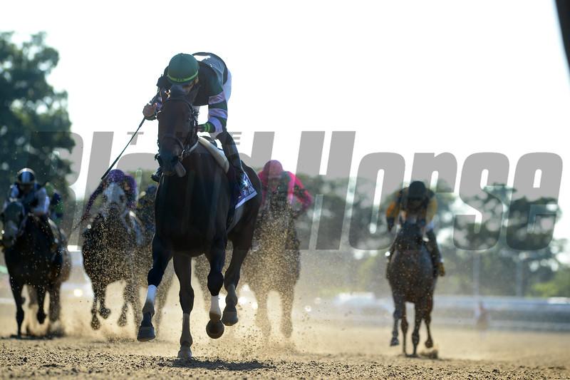Diversify wins the Suburban Stakes Saturday, July 7, 2018. Photo: Coglianese Photos