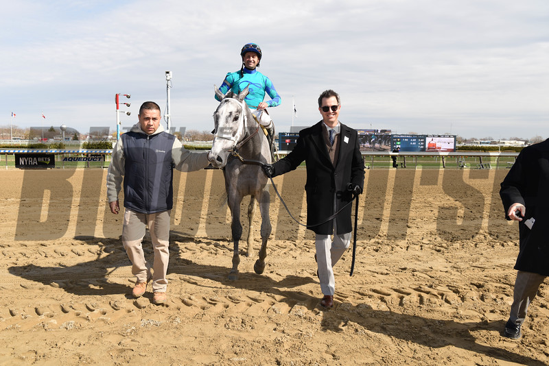 My Miss Lilly, Gazelle Stakes, G2, Aqueduct Racetrack, April 7 2018<br /> Coglianese Photos