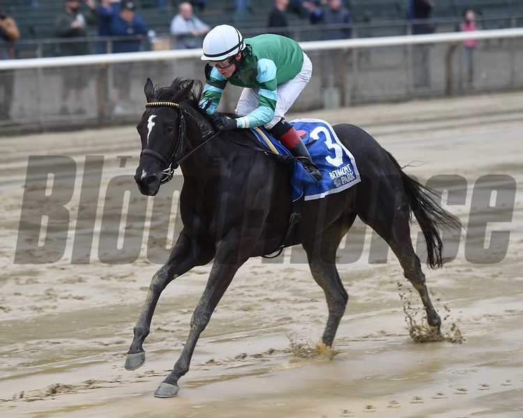 Nootka Sound wins the 2018 Soaring Softly Stakes<br /> Coglianese Photos/Chelsea Durand