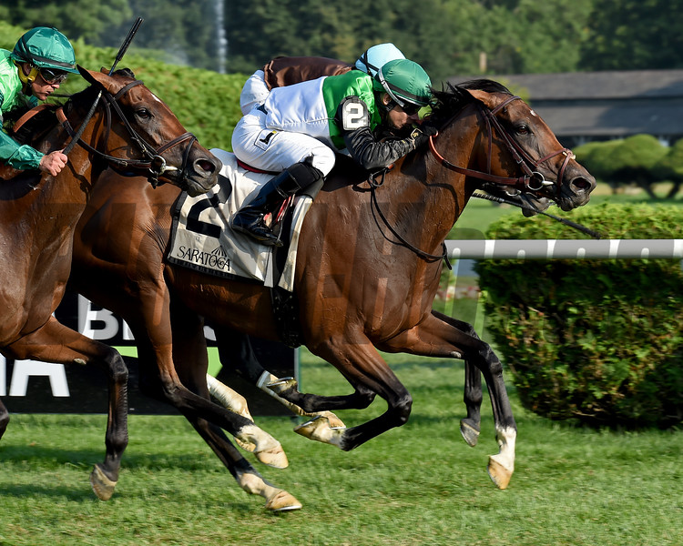 La Moneda wins the 2018 Yaddo Stakes<br /> Coglianese Photos/Elsa Lorieul