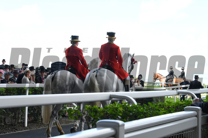 The Windsor Greys, Royal Procession, Royal Ascot, Ascot Race Course, Ascot, UK, 6-19-18, Photo by Mathea Kelley