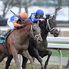 Vino Rosso wins the 2018 Wood Memorial<br /> Coglianese Photos/Rob Mauhar