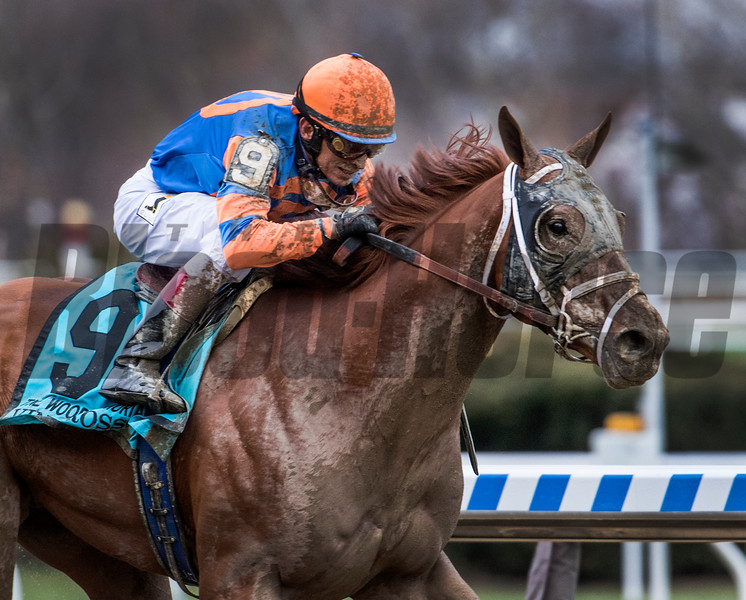 Vino Rosso with jockey John Velazquez wins the 94th running of The Wood Memorial at Aqueduct Saturday April 7, 2018 in Ozone Park, N.Y.  Photo by Skip Dickstein
