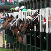 Churchill Distaff Turf Mile Start Chad B. Harmon