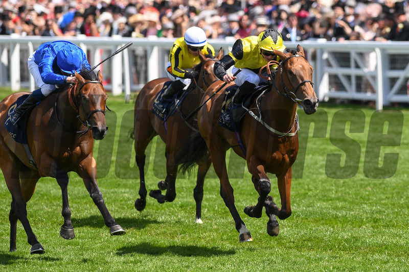 Main Edition, James Doyle win the G3 Albany Stakes, Royal Ascot; Ascot Race Course; Ascot; UK; 6-21-18; Photo by Mathea Kelley