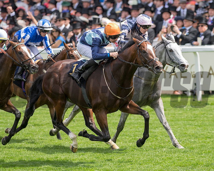 Accidental Agent with jockey Charles Bishiop, win the G1 Queen Anne Stakes, Royal Ascot, Ascot UK, June 19, 2018. Photo: Mathea Kelley