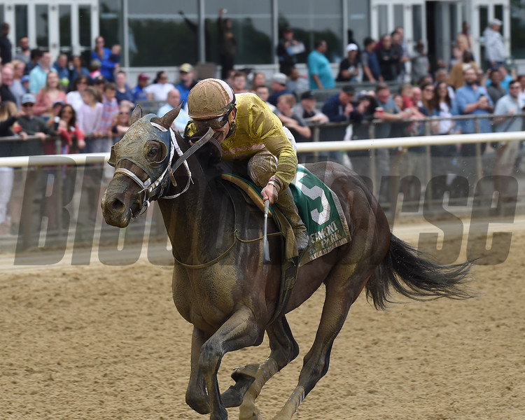 Analyze the Odds, Junior Alvarado, Mike Lee Stakes, $125,000, Belmont ark, May 28, 2018