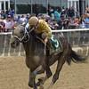 Analyze the Odds, Junior Alvarado, Mike Lee Stakes, $125,000, Belmont ark, May 28, 2018