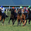 Shining Copper wins the 2018 Ft. Lauderdale Stakes<br /> Coglianese Photos/Andie Biancone