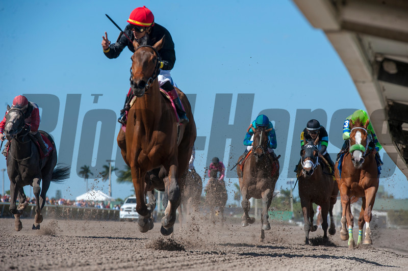 Fly So High with Jose  Ortiz   wins The Davona Dale; @ Gulfstream Park.; March 3 2018; © Joe DiOrio/Winningimages.biz