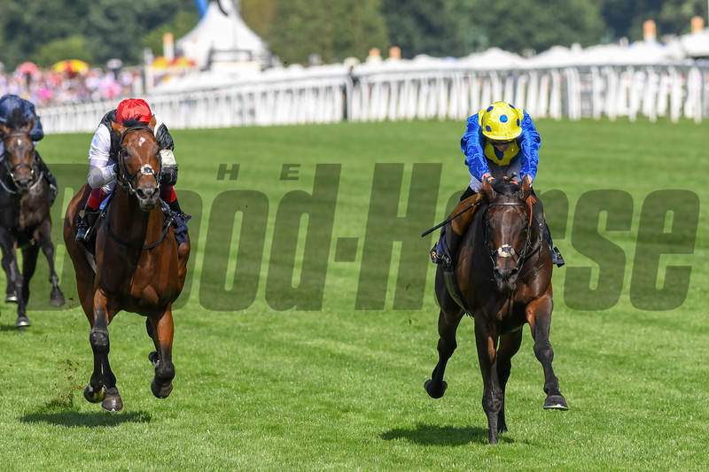 Poet's Word; James Doyle; win the G1 Prince of Wales Stakes; Royal Ascot; Ascot Race Course; Ascot; UK; 6-20-18; Photo by Mathea Kelley