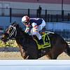My Boy Tate wins the 2018 Say Florida Sandy Stakes<br /> Coglianese Photos/Joe Labozzetta