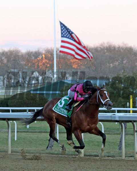 Maximum Security with Luis Saez win the 31st Running of the Cigar Mile (GI) at Aqueduct on December 7, 2019. Photo By: Chad B. Harmon