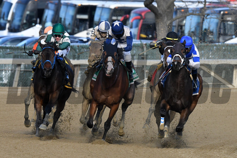Spiced Perfection wins the 2019 Go for Wand Handicap at Aqueduct<br /> Coglianese Photos/Janet Garaguso