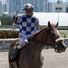 Tonalist's Shape - Maiden Win, Gulfstream Park, September 28, 2019<br /> Coglianese Photos/Ryan Thompson