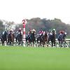 Almond Eye (JPN) wins 2019 Tenno Sho at Tokyo Racecourse. Photo: Masakazu Takahashi