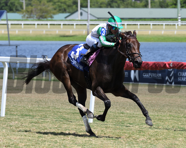 Onyx wins the 2019 Our Dear Peggy Stakes at Gulfstream Park<br /> Coglianese Photos/Ryan Thompson