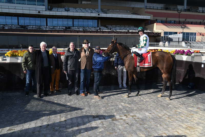 Feel Glorious wins the 2019 Winter Memories Stakes at Aqueduct<br /> Coglianese Photos