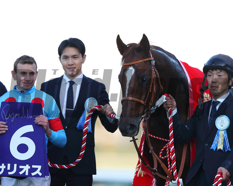 Salios wins the 2019 Asahi Hai Futurity at Hanshin<br /> Photo: Masakazu Takahashi