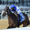 Spiced Perfection wins the 2019 Go for Wand Handicap at Aqueduct<br /> Coglianese Photos/Chelsea Durand