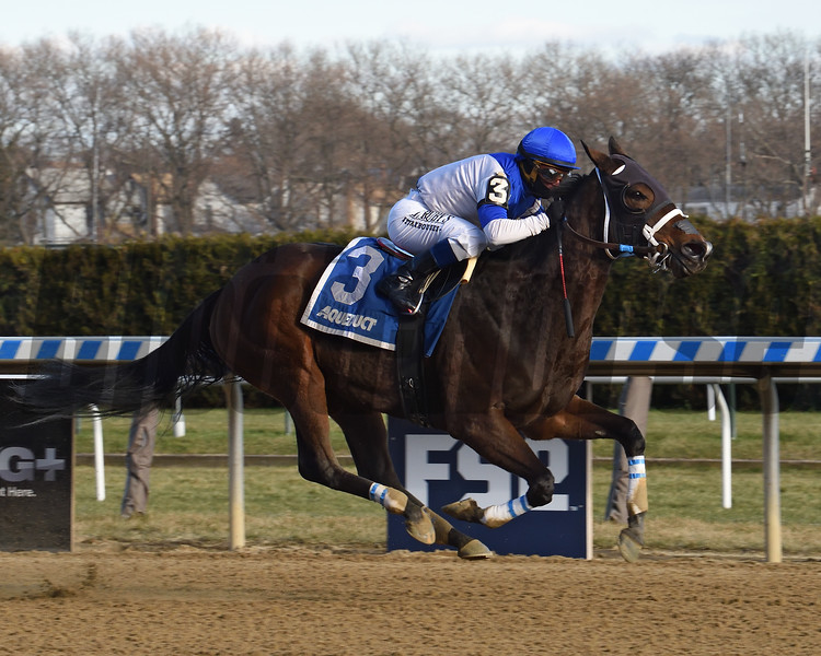 Spiced Perfection wins the 2019 Go for Wand Handicap at Aqueduct<br /> Coglianese Photos/Elsa Lorieul