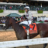 Tiz the Law wins the Champagne Stakes at Belmont Park<br /> Coglianese Photos/Joe Labozzetta