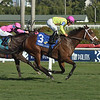 Shekky Shebaz wins the 2019 Claiming Crown Canterbury at Gulfstream Park<br /> Coglianese Photos/Lauren King
