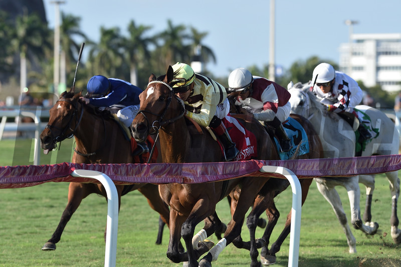 Mitchell Road wins the 2019 My Charmer Stakes at Gulfstream Park<br /> Coglianese Photos/Ryan Thompson